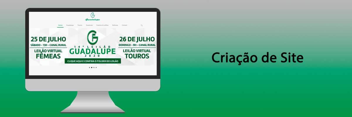 guadalupe banner portfolio